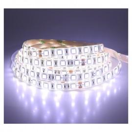 Ruban LED blanc 12V 14,4W/m IP65 résiné