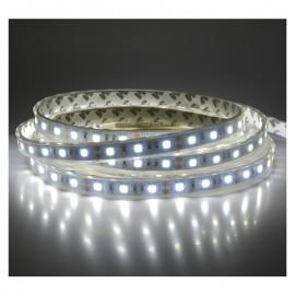 Ruban LED blanc 12V 14.4W/m IP67