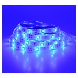 Ruban LED bleu 12V 7.2W/m IP65