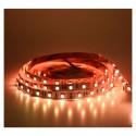 Ruban LED couleur 12V 4W/m