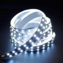 Ruban LED blanc 12V 12W/m double ligne